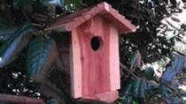 Birdhouse Hidden Camera w/ DVR & 90-Day Battery