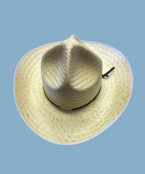 Veracruz hat paja