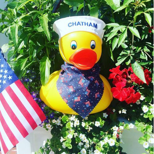 ​HAPPY 4th of July from Ducks in the Window!!!