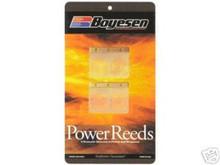 PWC Reeds Boyesen Kawasaki/Polaris/LaserJet