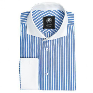 THE PREMIUM BLUE STRIPE SHIRT (WOMEN)