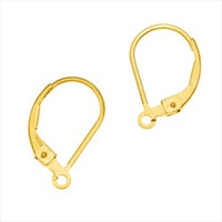 14k Gold Filled Classic Leverback Earwires w/ Open Ring (2)