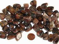 Tumbled Chiastolite - small