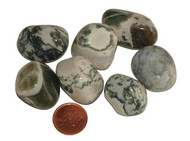 Tumbled Dendritic Tree Agate Stones - size large