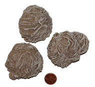 Desert Rose Stones - 150 to 169 grams