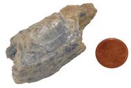 Blue Kyanite Stones - Specimen L - Image 1