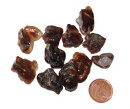 Fire Agate Tumbled Stones - 3 grams