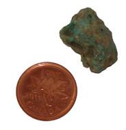 Raw Turquoise - Specimen G