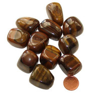 Tumbled Gold Tigers Eye stones - size XX large