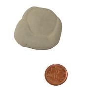 Calcite Fairy Stone - Specimen K