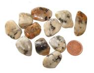 Tumbled Cassiterite in Quartz stones - 5 grams