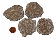 Desert Rose Crystal - 90 to 109 grams