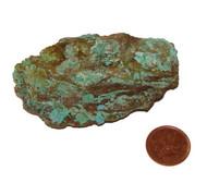 Turquoise Natural Stone - Specimen F