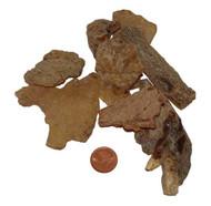 Copal Amber - Size Medium
