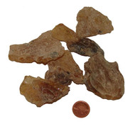 Copal Amber - Size Large