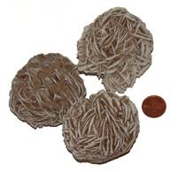 Desert Rose Selenite - 130 to 149 grams