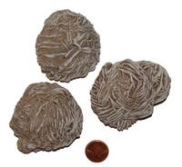 Desert Rose Stones - 150 to 169 grams