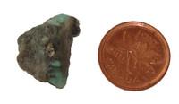 Turquoise Stone - Specimen D