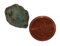 Turquoise Rough - Specimen F