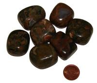 Rhyolite Tumbled Stones - XXL