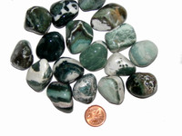 Sardonyx - Green - Tumbled - Medium