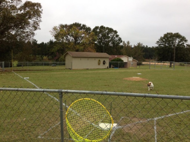 duncan hill wiffle ball field