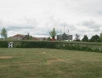 migley-wiffle-field.jpg