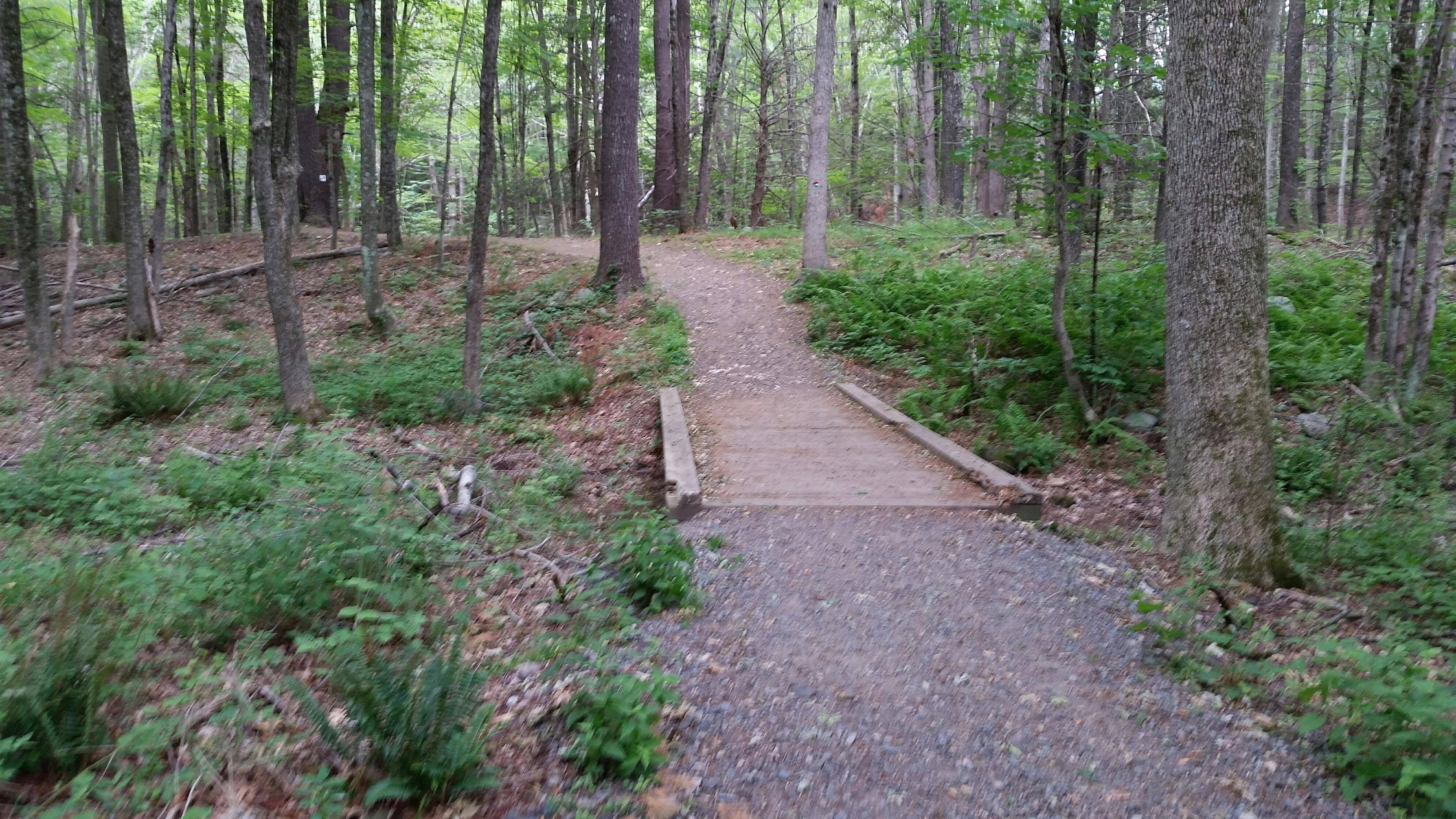 pequot-trail.jpg