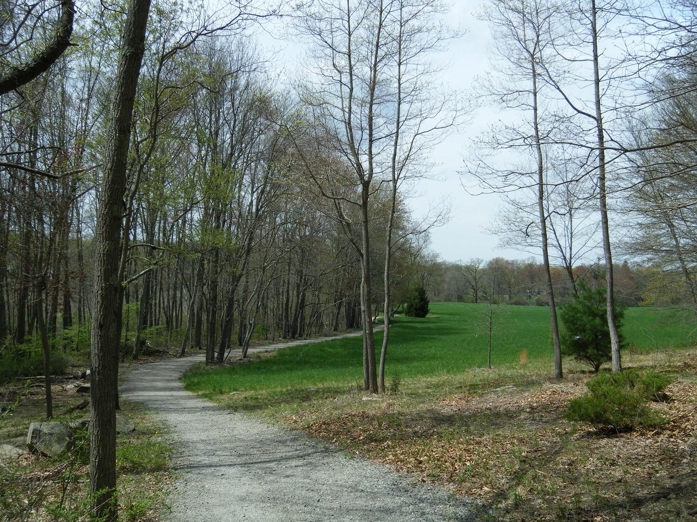 shelton-recreation-trail.jpg