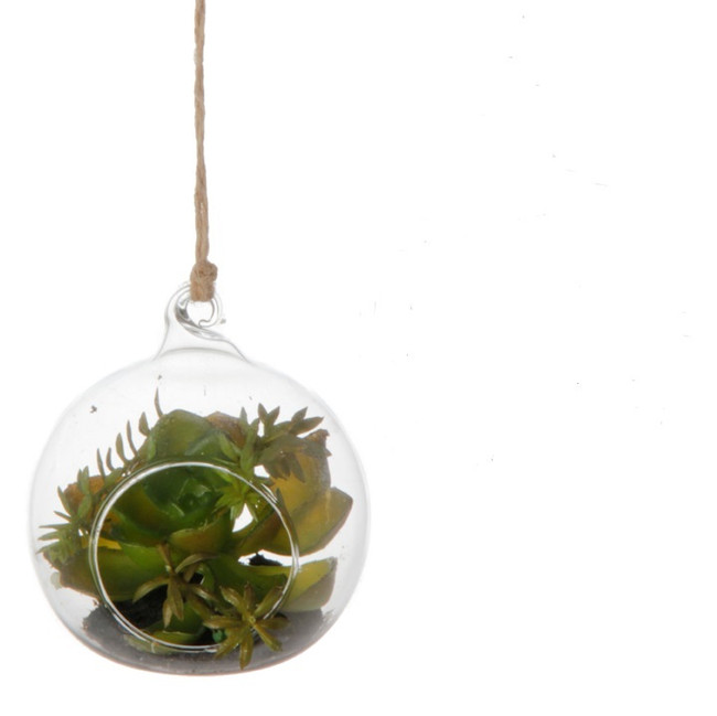 "Raz 8"" Succulent in Glass Hanging Planter 3722618"