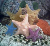 Silicone Knobby Starfish Soap Candle Tart Mold #2