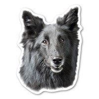 (Black) German Shepherd Magnet