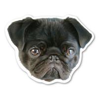 (Black) Pug Magnet