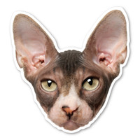 Sphynx Cat Magnet
