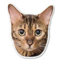 Bengal Cat Magnet