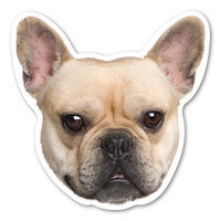 (Fawn) French Bulldog  Magnet
