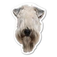 Soft Coated Wheaten Terrier  Magnet
