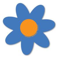 Blue and Orange Flower Magnet