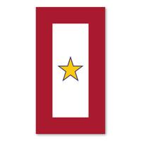 Gold Star Service Flag  Magnet