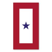 Blue Star Service Flag (1 Star)  Magnet