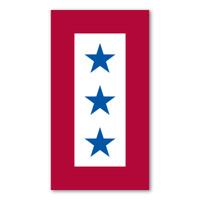 Blue Star Service Flag (3 Star)  Magnet