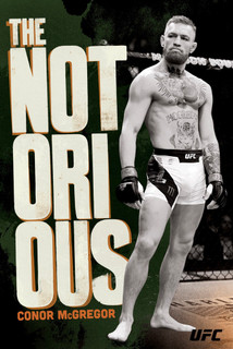 The Notorious Conor McGregor UFC Stance Sports Poster 24x36