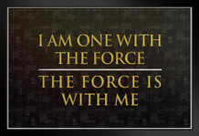 I Am One With The Force The Force Is With Me Movie Framed Poster by ProFrames 20x14 inch