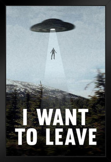 I Want To Leave UFO Abduction Funny Framed Poster by ProFrames 14x20 inch