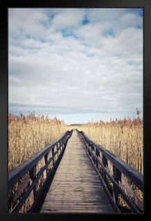 Wooden Boardwalk Photo Art Print Framed Poster by ProFrames 14x20 inch