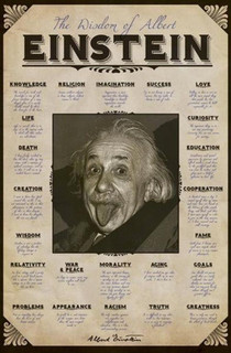Albert Einstein Quotes Poster 11x17