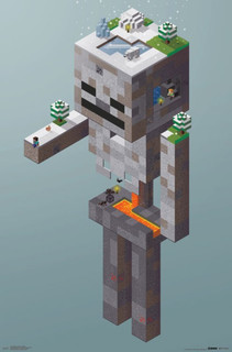 Minecraft Skeleton Tundra Video Gaming Poster 22x34