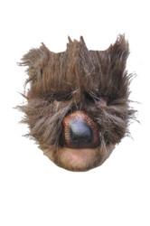 Bear Plush Mask