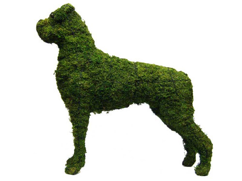 Boxer Topiary Dog Sculpture The Paws Mahal