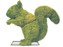 Squirrel 12 Inch Mossed Topiary